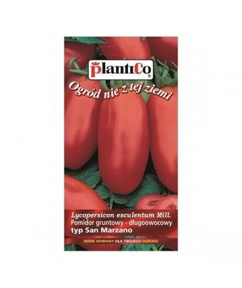 Pomidor gruntowy typ SAN MARZANO