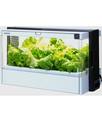 Domowa Szklarnia GREEN FARM do całorocznej uprawy warzyw i ziół