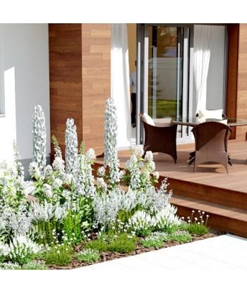 Ogród Biały Garden Box - Profesjonalna aranżacja ogrodu