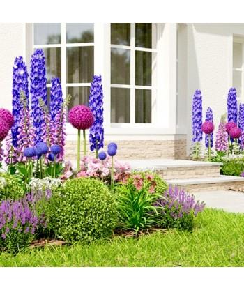Ogród Angielski Garden Box - Profesjonalna aranżacja ogrodu
