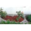 Elastyczne obrzeże ogrodowe GARDENER 10m + 20 kołków