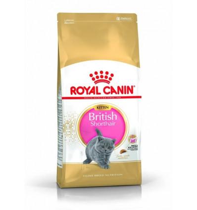 Karma dla kociąt Kitten British Shorthair 2kg Royal Canin
