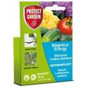 MAGNICUR ENERGY 840 SL grzybobójczy do warzyw 15ml