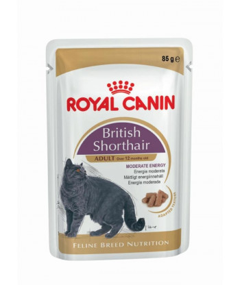 Saszetka British Shorthair 85g ROYAL CANIN
