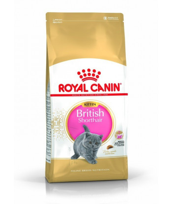 Karma dla kociąt Kitten British Shorthair 400g Royal Canin