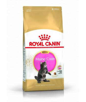 Karma dla kociąt Maine Coon 400g Royal Canin