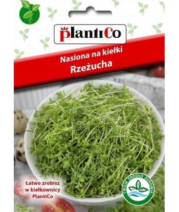 Nasiona na kiełki - kozieradka 20g PlantiCo