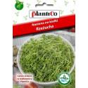 Nasiona na kiełki - Rzeżucha 30g PlantiCo