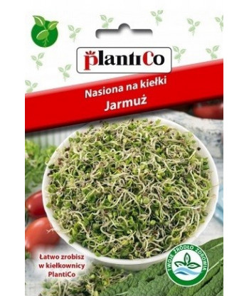 Nasiona na kiełki - Jarmuż 5g PlantiCo