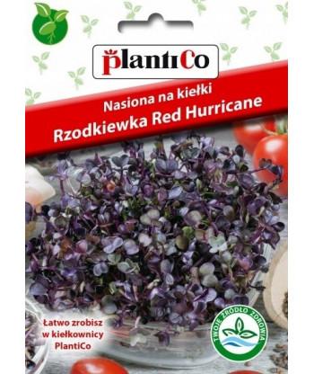 Nasiona na kiełki - Rzodkiewka czerwona 10g PlantiCo