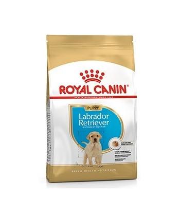 Karma dla psów Labrador Retriever Junior 3 kg Royal Canin