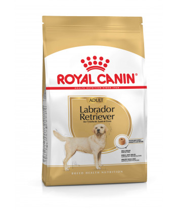 Karma dla psów Labrador Retriever Junior 3 kg Royal Canin