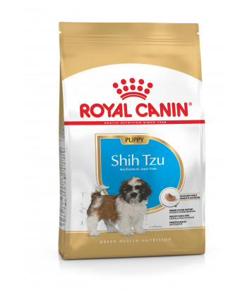 Karma dla psów Shih Tzu Junior 500g Royal Canin