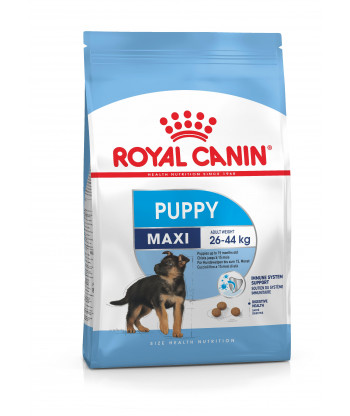 Karma dla psów Maxi Junior 1kg Royal Canin