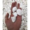 Grys Extra White BIOVITA 20 kg