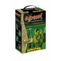 Nasiona traw SHADOW 1kg AGRECOL