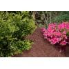 Zrębki drzewne BIOVITA 50 L kolor czerwony