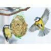 """Pokarm dla ptaków """"Ptasia pyza"""" 500g"""
