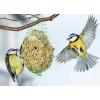 """Pokarm dla ptaków """"Ptasia pyza"""" 100gx2"""