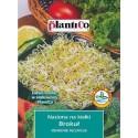 Nasiona na kiełki - Brokuł 10g PlantiCo