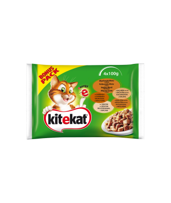 Karma dla kota saszetka z łososiem 100g Kitekat