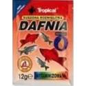 DAFNIA witaminizowana suszona rozwielitka z dodatkiem witamin 12g Tropical