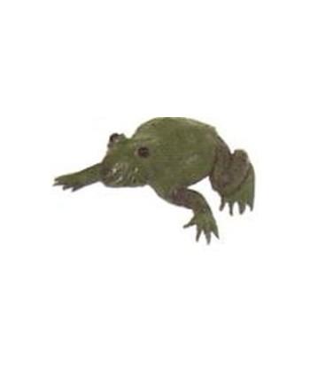 Żaba mała L 16cm Exo-flora