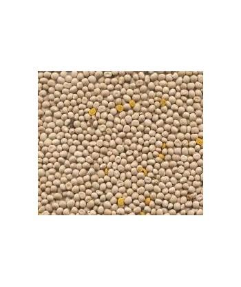 Łubin żółty BARYT paszowy 1kg PLANTA