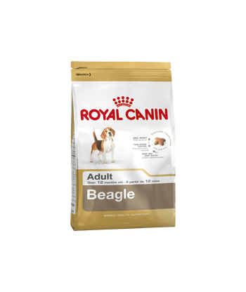 Karma dla psów Beagle Adult 3 kg Royal Canin