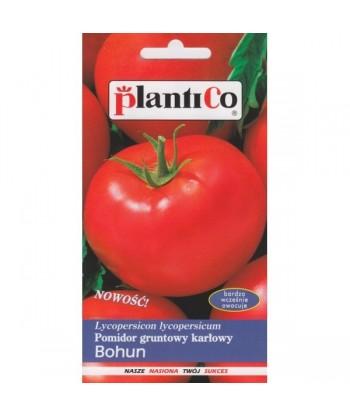 Pomidor gruntowy karłowy BOHUN